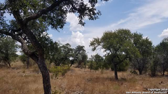 LOT 87 Love Creek Court, Spicewood, TX 78669 (#1409029) :: The Perry Henderson Group at Berkshire Hathaway Texas Realty