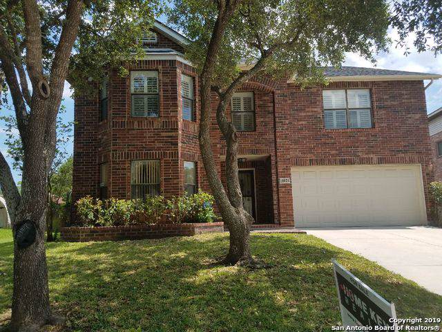 10826 Deercliff Pass, San Antonio, TX 78251 (MLS #1412883) :: Niemeyer & Associates, REALTORS®