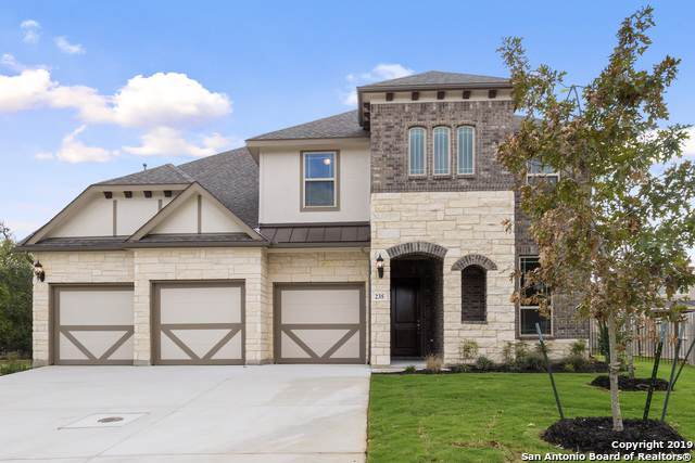 235 Branson Falls, Boerne, TX 78006 (#1415411) :: The Perry Henderson Group at Berkshire Hathaway Texas Realty