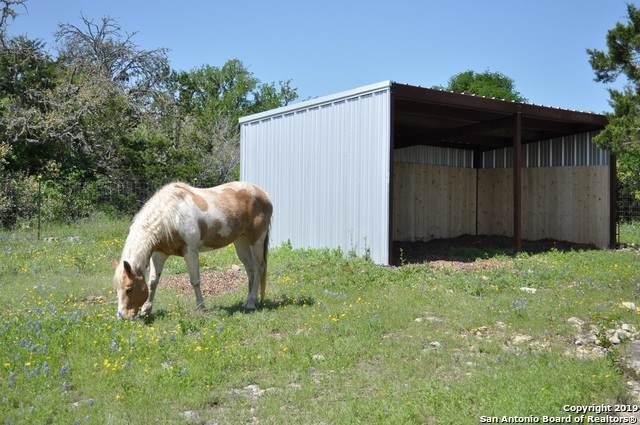 525 County Road 375, San Antonio, TX 78253 (MLS #1416582) :: Alexis Weigand Real Estate Group