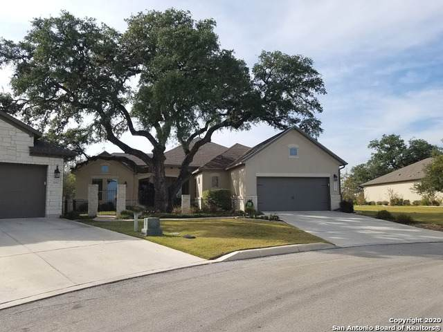 22915 Canasta, San Antonio, TX 78261 (MLS #1428131) :: The Glover Homes & Land Group