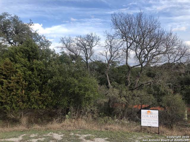195 High Valley Dr, New Braunfels, TX 78132 (MLS #1430323) :: Neal & Neal Team