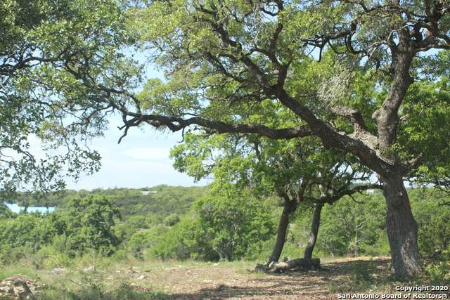 26951 Pecan Bluff, Boerne, TX 78006 (#1446423) :: The Perry Henderson Group at Berkshire Hathaway Texas Realty