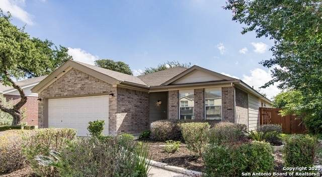 20320 Liatris Ln, San Antonio, TX 78259 (MLS #1451229) :: Carolina Garcia Real Estate Group