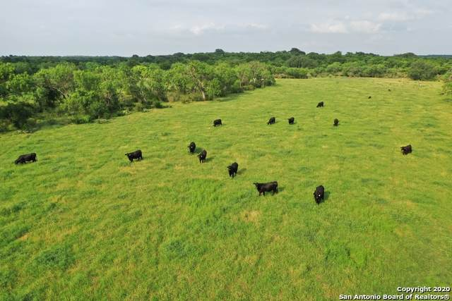281 Cr 475, Castroville, TX 78009 (MLS #1460388) :: The Lugo Group