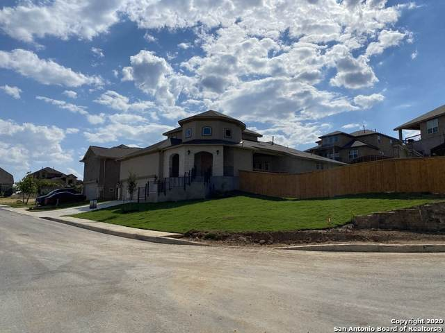 18935 Llano Ledge, San Antonio, TX 78256 (MLS #1477292) :: Maverick