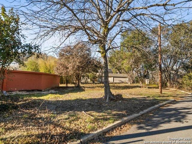 516 Circle St, Alamo Heights, TX 78209 (MLS #1479956) :: The Gradiz Group
