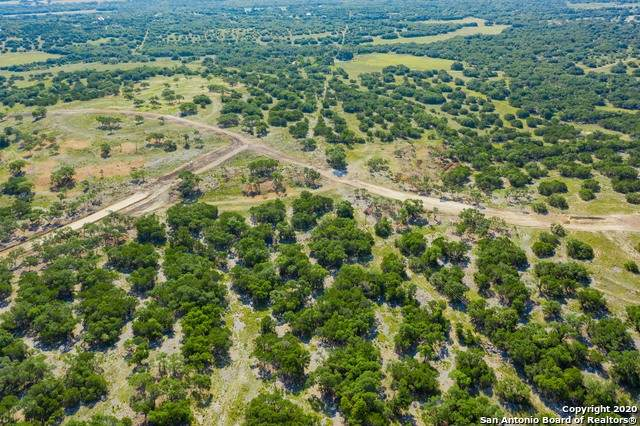 619 E Ammann Rd, Bulverde, TX 78163 (MLS #1480015) :: The Lugo Group