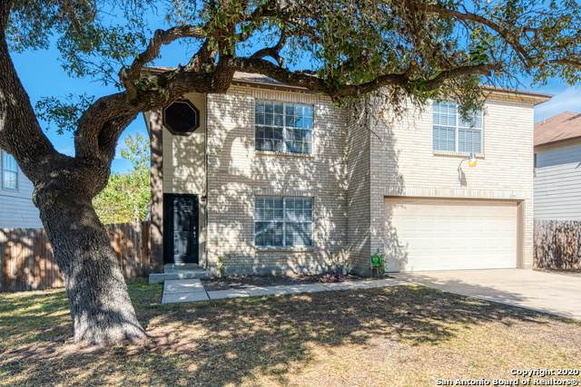 171 Clover Crk, San Antonio, TX 78245 (MLS #1483478) :: Alexis Weigand Real Estate Group