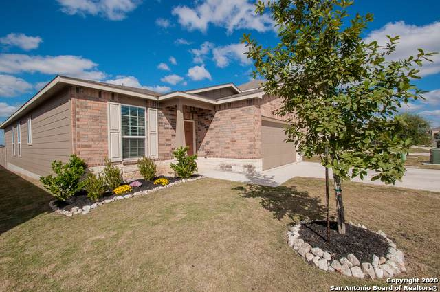 162 Texas Thistle, New Braunfels, TX 78130 (MLS #1488911) :: The Mullen Group | RE/MAX Access