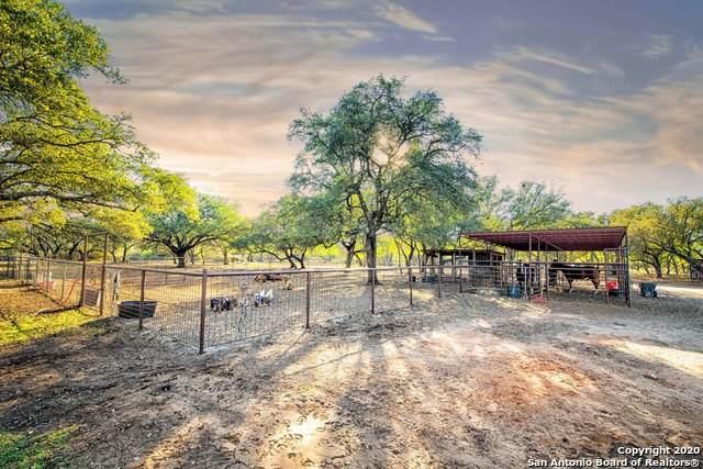 317 County Road 4314, Hondo, TX 78861 (MLS #1495366) :: Carter Fine Homes - Keller Williams Heritage