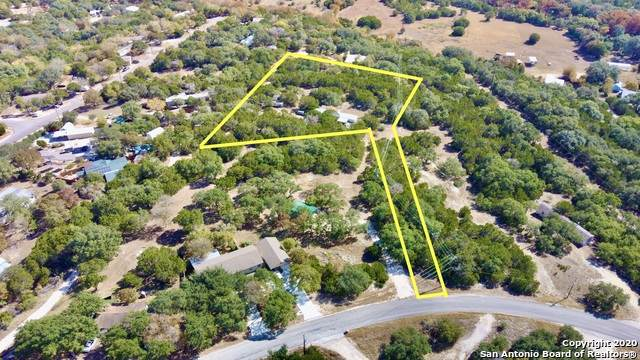 523 Sir Winston Dr, Canyon Lake, TX 78133 (MLS #1495843) :: Carolina Garcia Real Estate Group