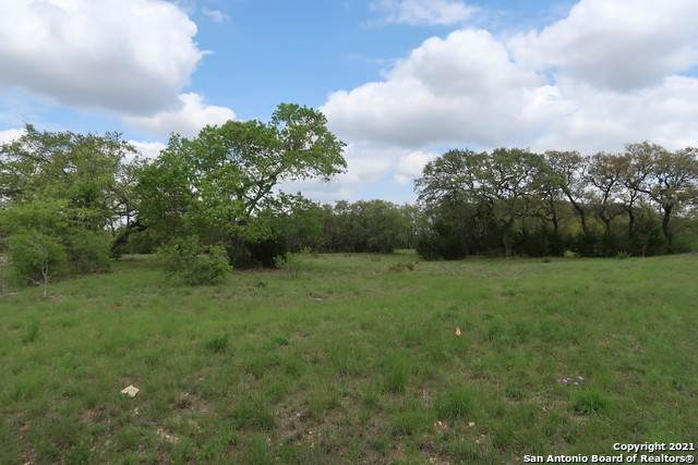 25010 Black Crk, San Antonio, TX 78257 (MLS #1497069) :: Santos and Sandberg