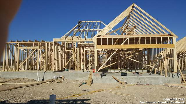 313 Otis Crossing, Cibolo, TX 78108 (MLS #1506700) :: Keller Williams City View