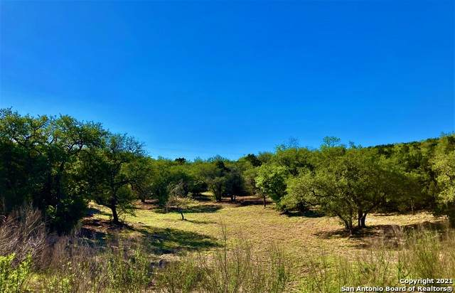 22223 Ravine Pass, San Antonio, TX 78255 (MLS #1523184) :: Exquisite Properties, LLC