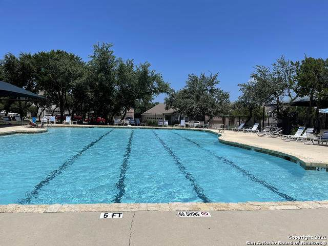 21407 Battle Crk, San Antonio, TX 78259 (MLS #1541618) :: Texas Premier Realty