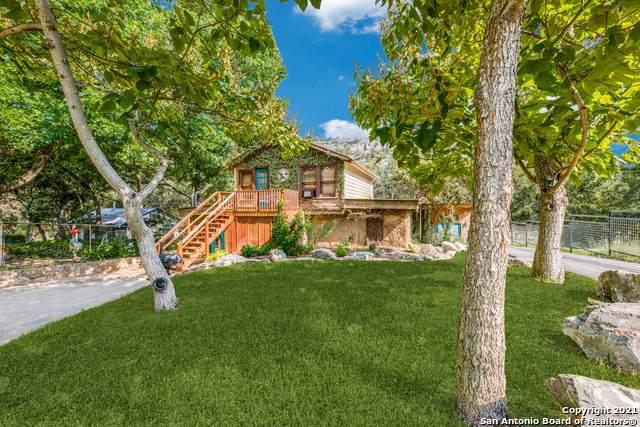8570 River Road, New Braunfels, TX 78132 (MLS #1550106) :: Exquisite Properties, LLC