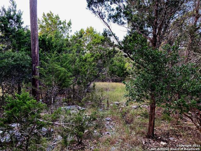 617 Eves Spring Dr, Canyon Lake, TX 78133 (MLS #1557481) :: The Glover Homes & Land Group