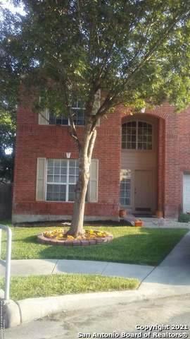 5106 Spring Ash, San Antonio, TX 78247 (MLS #1564727) :: Phyllis Browning Company