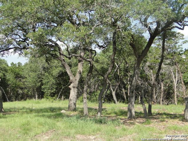 124 Balcones Bnd, Boerne, TX 78006 (MLS #983840) :: Magnolia Realty