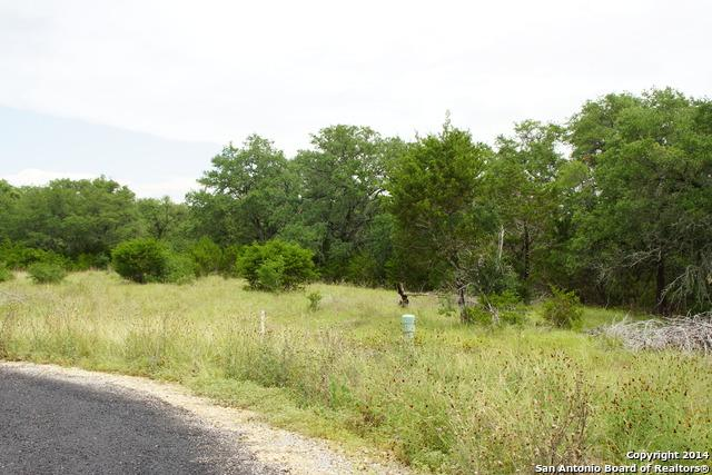 119 Restless Wind, Spring Branch, TX 78070 (MLS #1065761) :: Alexis Weigand Real Estate Group