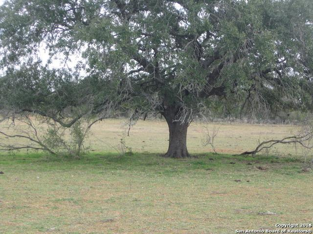 00 S Fm 173, Bigfoot, TX 78005 (MLS #1157471) :: Alexis Weigand Real Estate Group