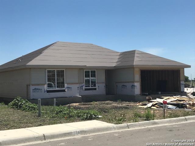 135 Lost Maples, Marion, TX 78124 (MLS #1287484) :: Exquisite Properties, LLC