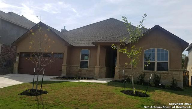 224 Bamberger Ave, New Braunfels, TX 78132 (MLS #1294501) :: The Suzanne Kuntz Real Estate Team