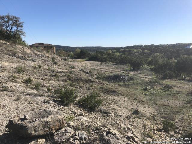 21375 County Road 174, Helotes, TX 78023 (MLS #1300556) :: Neal & Neal Team