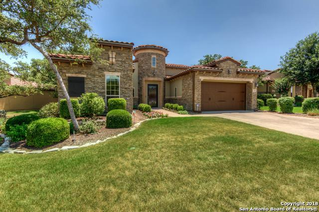 22606 Viajes, San Antonio, TX 78261 (MLS #1317448) :: Alexis Weigand Real Estate Group