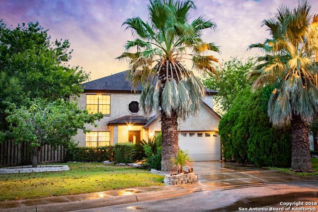 1066 Stone Hollow, New Braunfels, TX 78130 (MLS #1326954) :: The Suzanne Kuntz Real Estate Team
