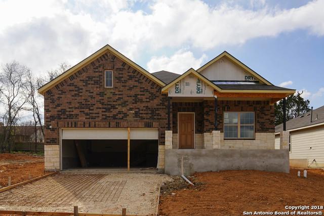 16431 Paso Rio Creek, San Antonio, TX 78247 (MLS #1329836) :: Exquisite Properties, LLC