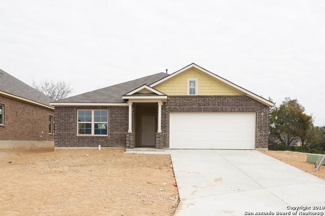 16307 Amistad Pass, San Antonio, TX 78247 (MLS #1335513) :: Alexis Weigand Real Estate Group