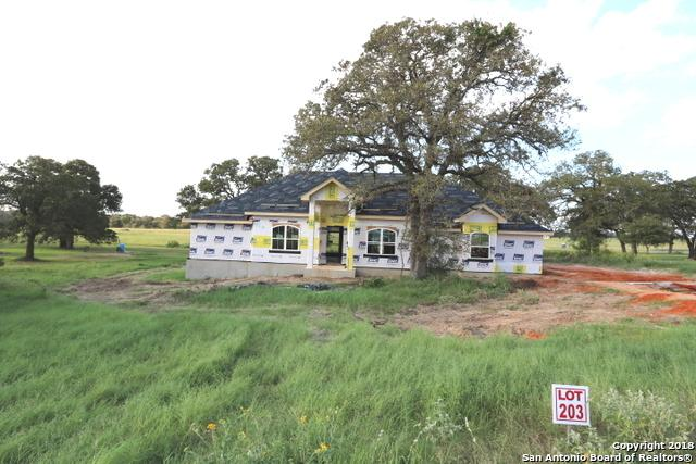 271 Abrego Lake Dr, Floresville, TX 78114 (MLS #1336775) :: Magnolia Realty