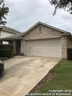 2719 Thunder Gulch, San Antonio, TX 78245 (MLS #1338389) :: Alexis Weigand Real Estate Group