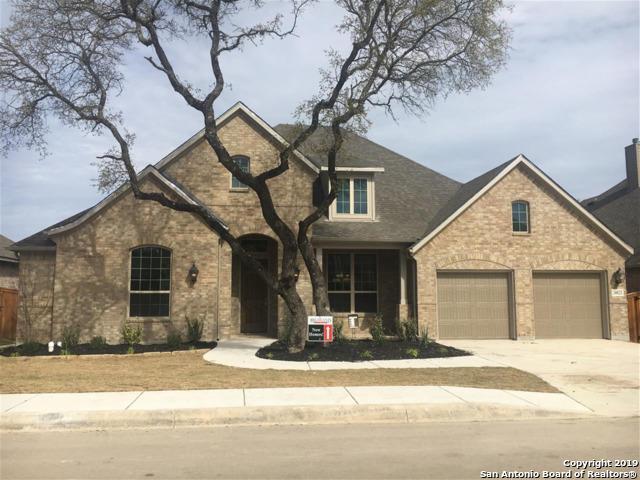 28822 Porch Swing, Boerne, TX 78006 (MLS #1343065) :: Erin Caraway Group