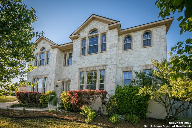 9223 Saucedo Dr, Helotes, TX 78023 (MLS #1378762) :: Alexis Weigand Real Estate Group