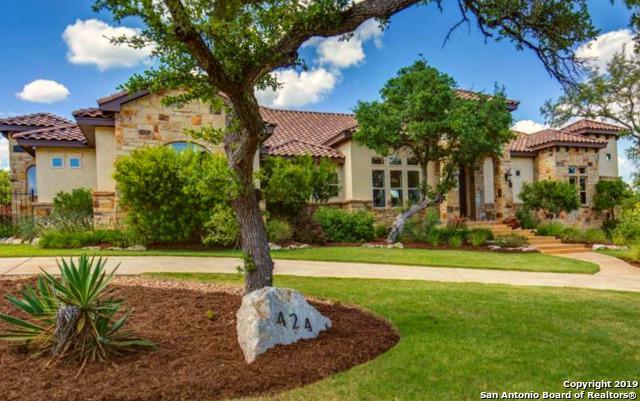 424 Menger Springs, Boerne, TX 78006 (MLS #1384131) :: Exquisite Properties, LLC