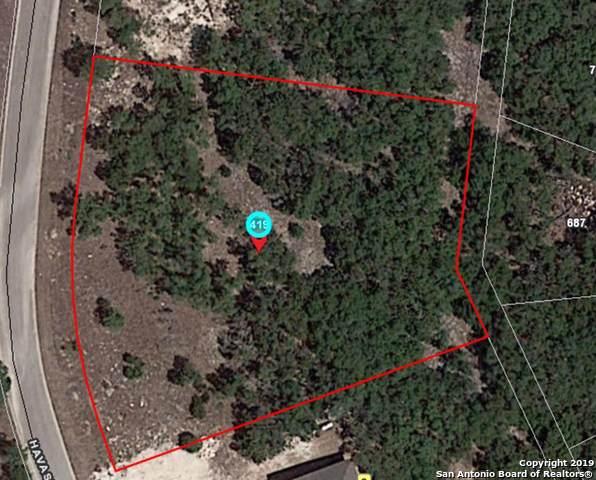 419 Havasu Pt, Spring Branch, TX 78070 (MLS #1387749) :: BHGRE HomeCity