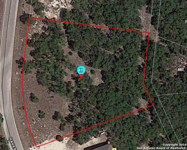 419 Havasu Pt, Spring Branch, TX 78070 (MLS #1387749) :: Niemeyer & Associates, REALTORS®