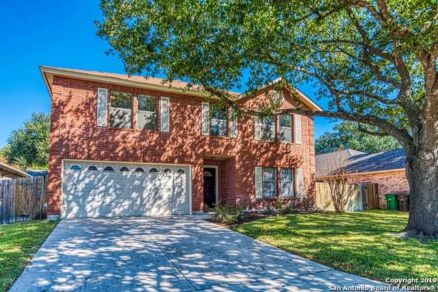 3559 Mistic Grove, San Antonio, TX 78247 (MLS #1425700) :: Niemeyer & Associates, REALTORS®
