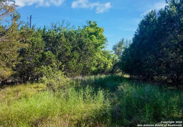 570 Rosewood Dr, Spring Branch, TX 78070 (MLS #1454913) :: BHGRE HomeCity San Antonio