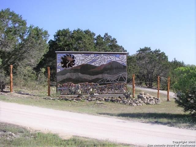 1285 Agaritaville, Spring Branch, TX 78070 (MLS #1487170) :: The Glover Homes & Land Group