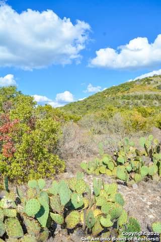 255 Brushy Creek Road - Photo 1