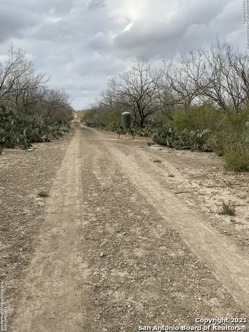 TBD Old San Diego Rd, Tilden, TX 78072 (MLS #1502228) :: The Mullen Group | RE/MAX Access