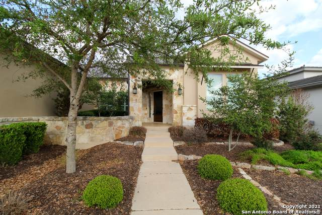 24010 Ladera Ranch, San Antonio, TX 78261 (MLS #1516351) :: The Mullen Group | RE/MAX Access