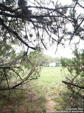 140 Rosewood Ct, Spring Branch, TX 78070 (MLS #1519590) :: 2Halls Property Team | Berkshire Hathaway HomeServices PenFed Realty