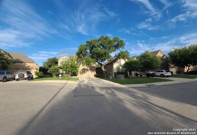 26807 Tulip Mdw, Boerne, TX 78015 (MLS #1541191) :: Exquisite Properties, LLC