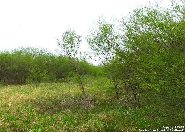 25AC TRS 2,3,4 Hwy 59 Oak Mott Ranchettes, Beeville, TX 78102 (MLS #1227760) :: Magnolia Realty