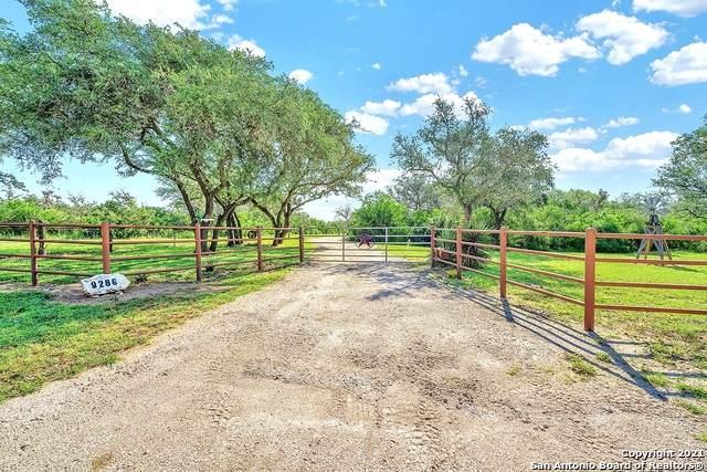 9286 Fm 2617, Pettus, TX 78146 (MLS #1518795) :: Exquisite Properties, LLC